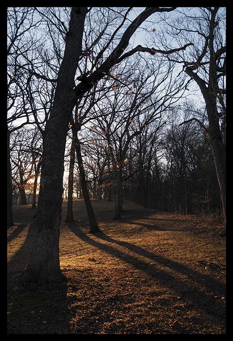 Twighenge 1400164 BLOG
